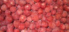 erdbeeren-frozen3.jpg